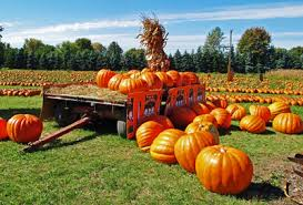 Eight Fall Festivities in the Garden State